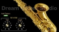 DVS Saxophone de Dream Vortex Studio